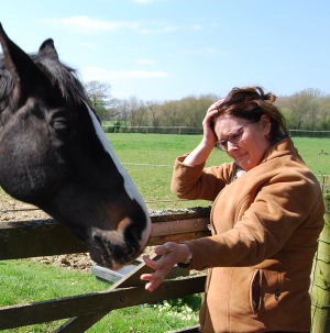 Equestrian Employer struggling with mental health